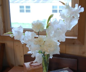 White carnation and gladiola blooms grace tiny space