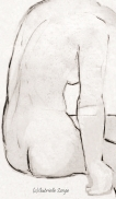 12_15 FINAL IMAGEScopyright_Page_11